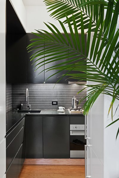 """Modern home with kitchen. After moving the wall between the kitchen and living areas, Kate and Arthur were able to configure an L-shaped--which was critical in adding a full height refrigerator, full height pantry, and an 18"""" dishwasher. They opted for a minimalist black and white aesthetic, with dark black-green cabinets, and a dark soapstone counter.  Photo  of Overhaul of an Upper West Side Brownstone Apartment"""