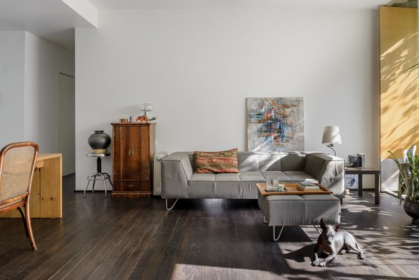 Photo  of Chihuahua 176 modern home