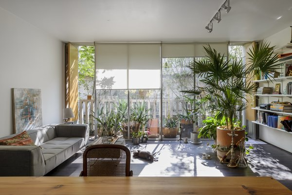 Photo 7 of Chihuahua 176 modern home