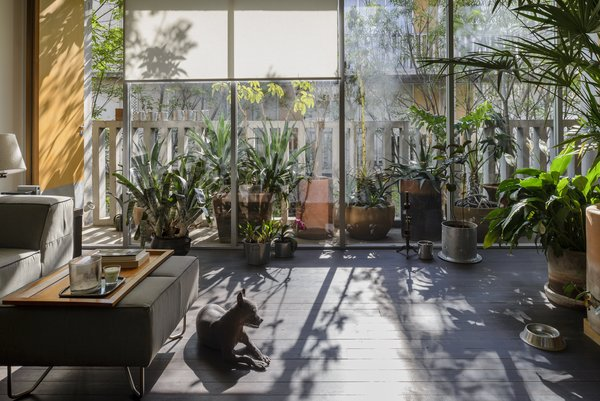 Photo 4 of Chihuahua 176 modern home