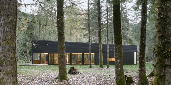 Modern home with outdoor and woodland. Photo 4 of Courtyard House on a River