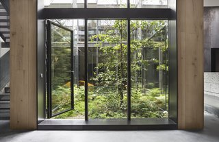 """50 Modern Homes With Floor-to-Ceiling Windows - Photo 47 of 50 - A few years ago, photographer Peter Krasilnikoff asked Studio David Thulstrup to create his new Copenhagen home from an old pencil factory and incorporate a green space. Taking inspiration from urban rooftop gardens and """"innovative green zones in buzzing cosmopolitan cities,"""" the firm's resulting design, finished in 2015, features a three-story glass atrium at the home's center."""