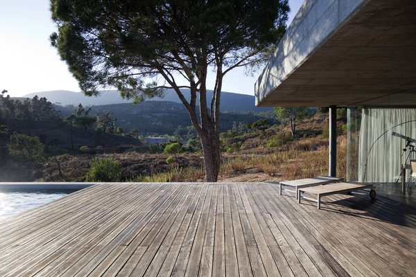 Modern home with outdoor, wood patio, porch, deck, trees, large pool, back yard, and large patio, porch, deck. Photo 4 of House in Pedrogão