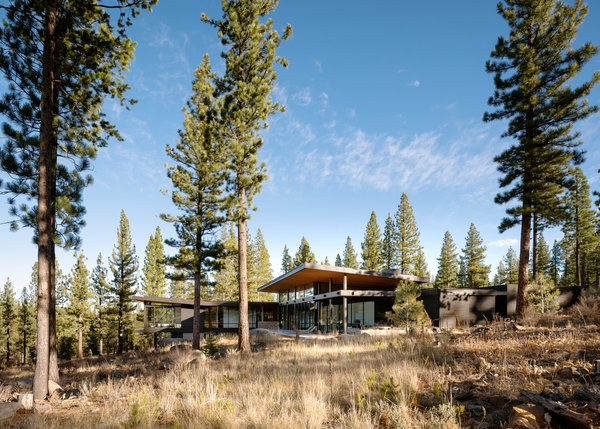 Modern home with outdoor, back yard, slope, and trees. Exterior Photo 13 of Martis Camp Residence 1