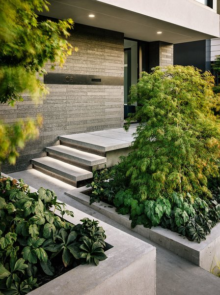 Exterior Entry Photo 3 of Butterfly House modern home