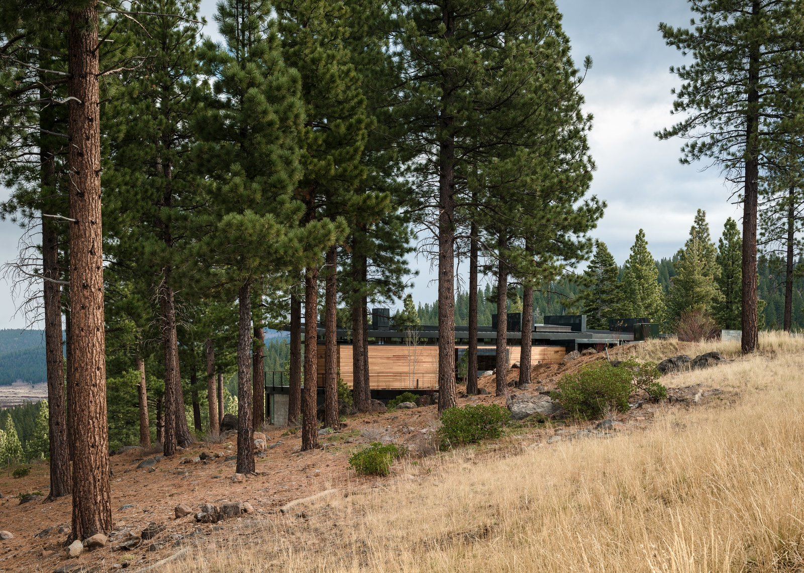 Tagged: Outdoor, Side Yard, Trees, Grass, Shrubs, and Boulders. Martis Camp Residence 2 by John Maniscalco Architecture