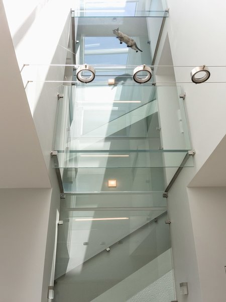 Modern home with staircase, wood railing, and wood tread. Glass enclosed staircase with glass bridges on each floor Photo 4 of Modern Building Approved in Jackson Ward-Historic district