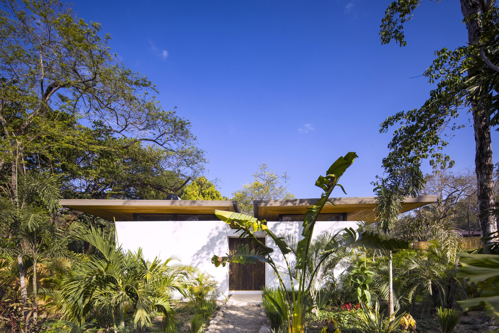 Each villa sits harmoniously within the tropical landscape,  shaded by trees and vegetation.