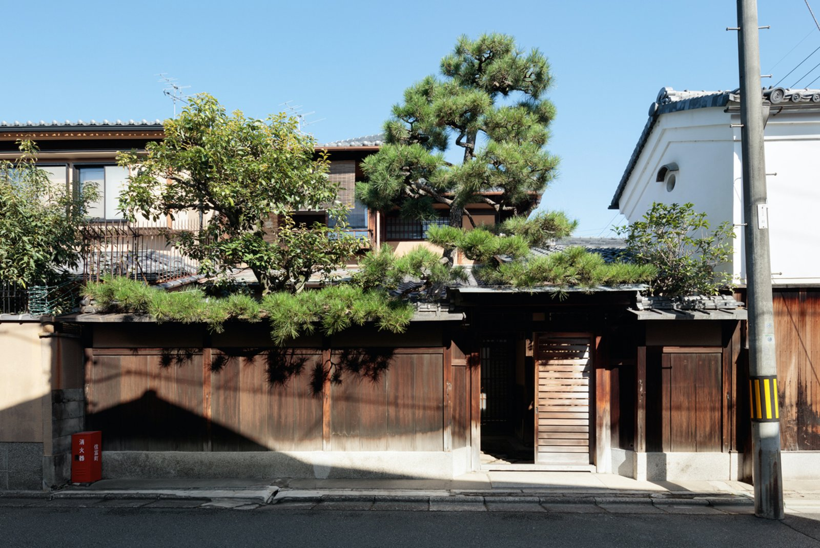 A private entry allows guests to rest and explore as they please. Tagged: Outdoor, Wood Fences, Wall, Trees, and Front Yard.  Photo 2 of 13 in A Minimalist Townhouse Provides Serene Accommodations in Historic Kyoto