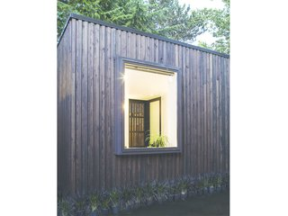 A Modern Micro-House in Portland Clad in Local Fir - Photo 7 of 8 - The custom screen door is visible on the far side of the space. Windows are strategically located to frame views of the exterior landscape.