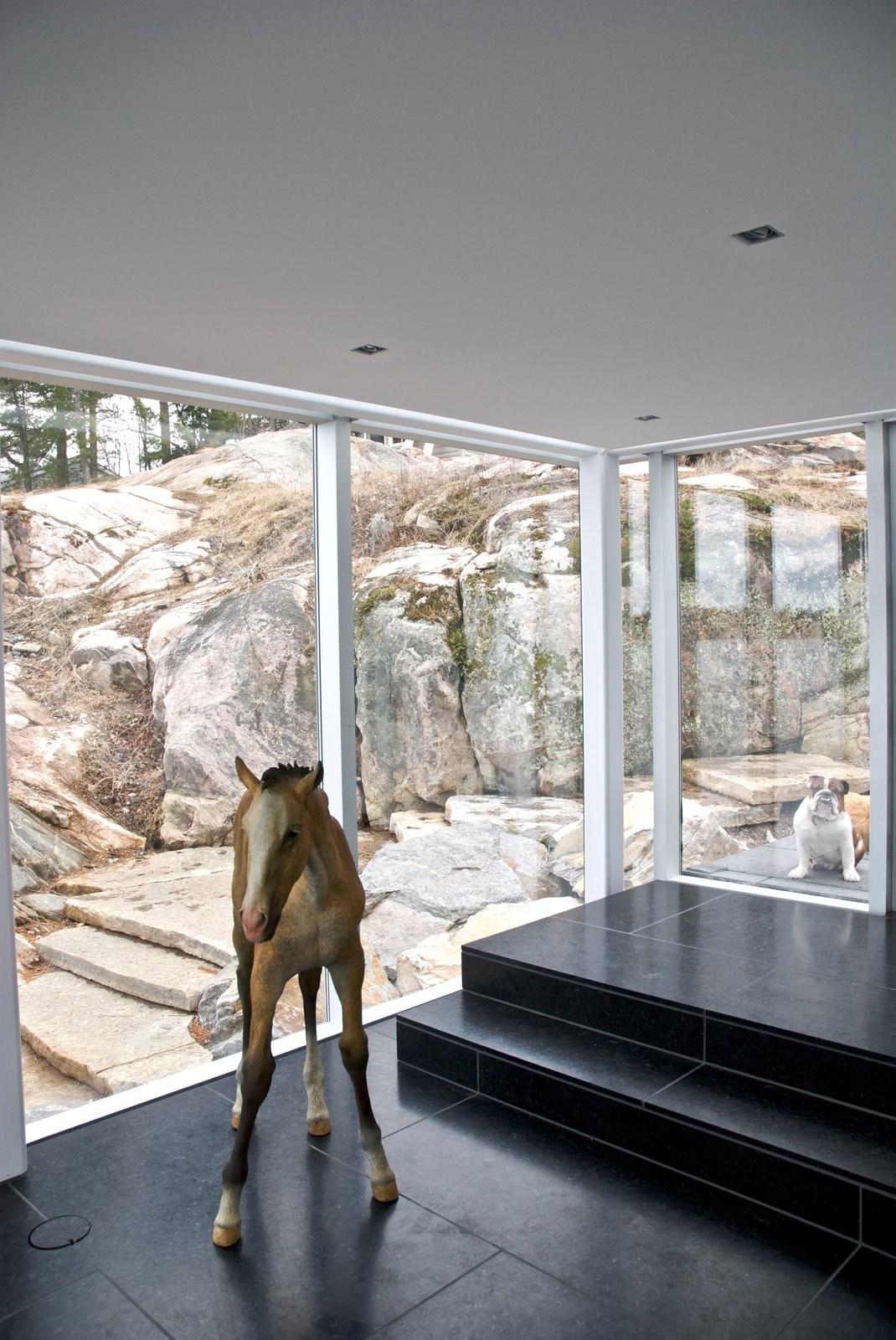 This Mesmerizing Glass House Is Also a Photographer's Lakeside Studio - Photo 8 of 13 -