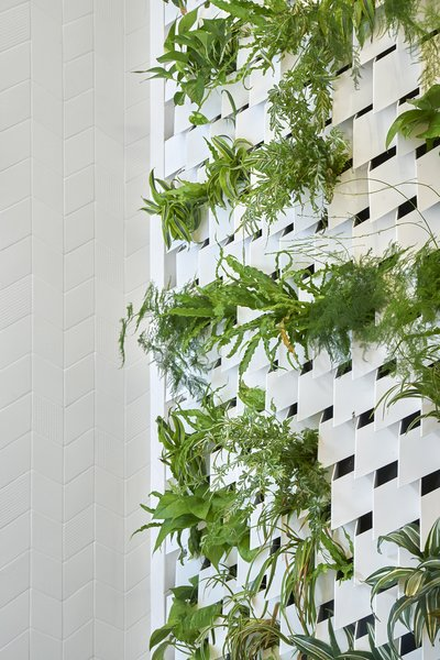 Detail view of the fern green shower wall.