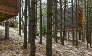 Camp in Style at This Trio of Cedar-Clad Cabins in Minnesota - Photo 1 of 8 -