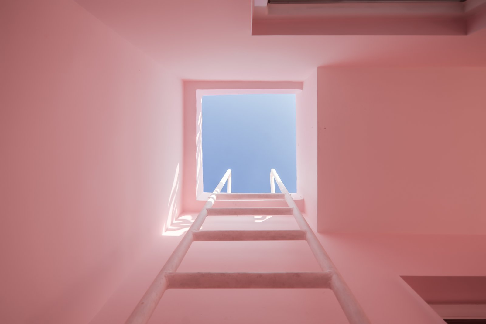 A built-in ladder provides access to the roof deck.  The blue skies contrast with the light pink walls, creating a pastel composition of solid and void.  Tagged: Windows and Skylight.  Best Windows Photos from These Pink and Blue Homes Use Gender as a Metaphor For Urban Revitalization