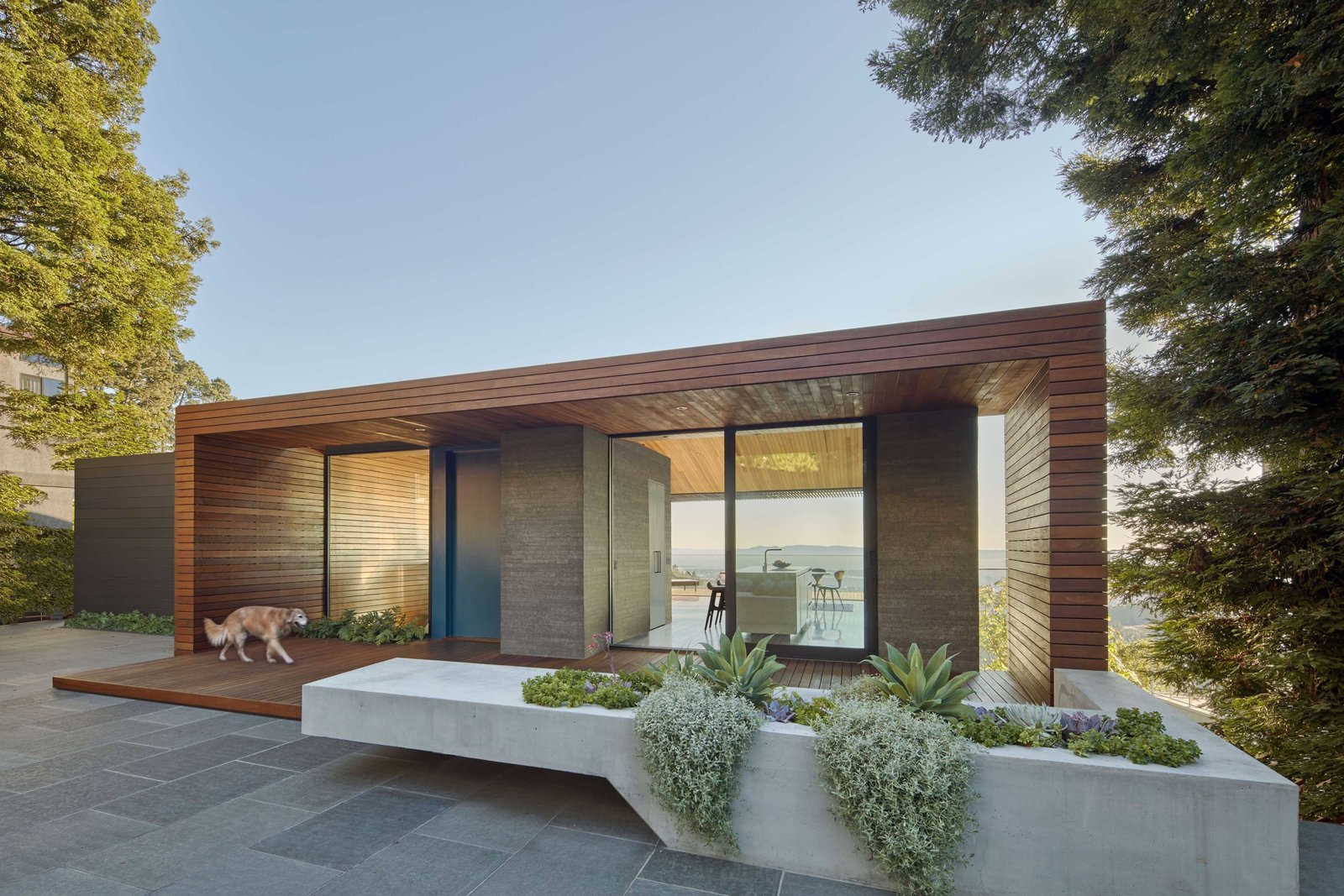 Front outdoor area Tagged: Outdoor, Front Yard, Shrubs, Trees, Hardscapes, Grass, Small Patio, Porch, Deck, Metal Fences, Wall, Landscape Lighting, and Gardens.  Skyline House by Terry & Terry Architecture
