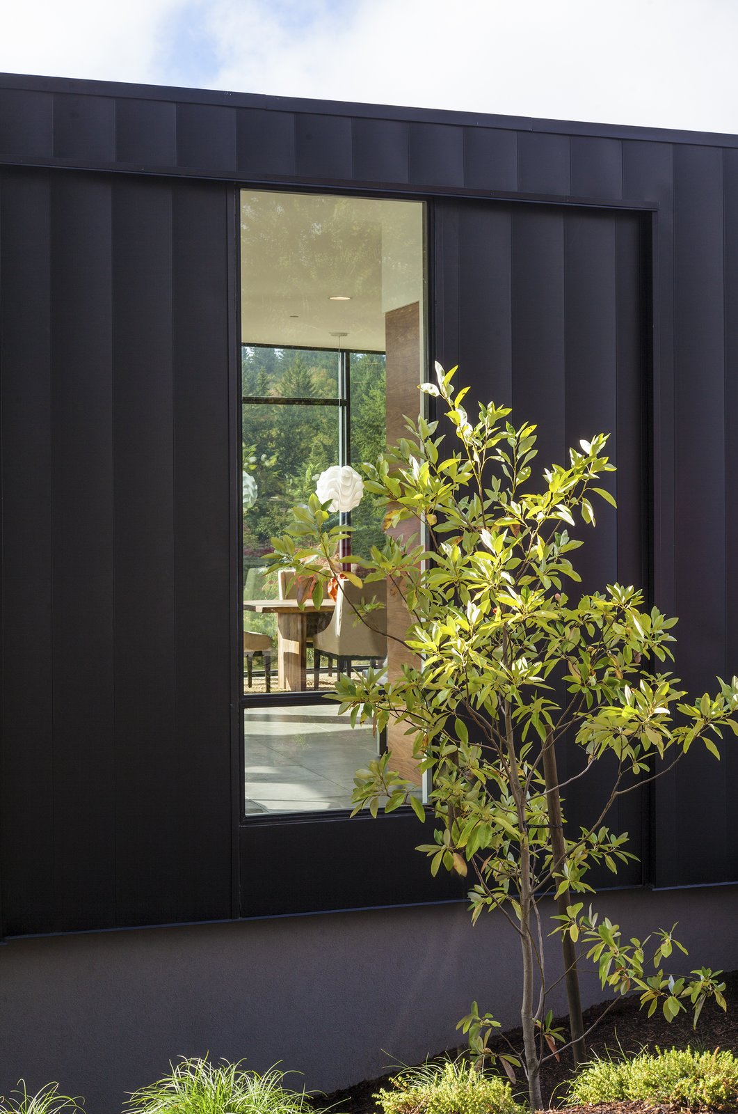 Window Tagged: Outdoor, Trees, Shrubs, and Grass.  Canterbury Residence by Scott | Edwards Architecture