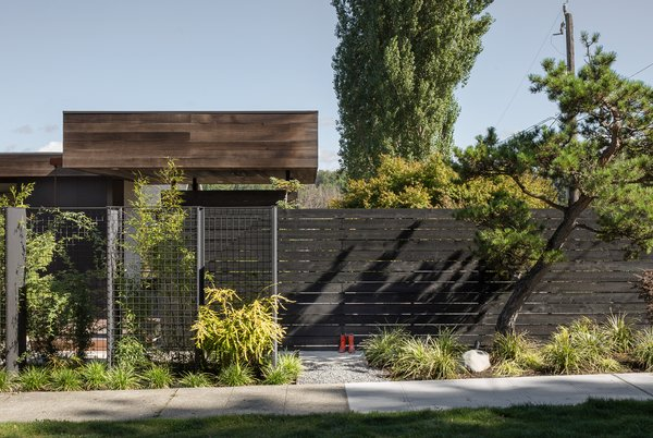 Modern home with outdoor and horizontal fence. Helen Street by mw|works Photo 3 of Helen Street
