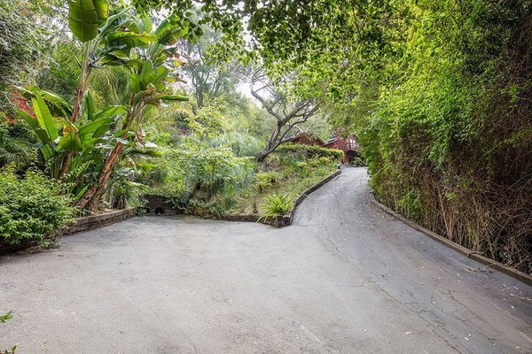 Modern home with outdoor, front yard, and trees. Driveway Photo 2 of Cedar Lodge on over a 1/2 Private Acre in Lower Nichols Canyon