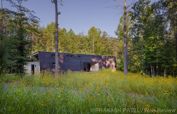 Modern home with outdoor, front yard, trees, grass, and flowers. Removed from city noise, the wooded site offers a chance to enjoy the seasons, to breathe, and to think. Photo  of Dogtrot at Stony Point