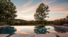 Modern home with Outdoor, Infinity Pools, Tubs, Shower, Trees, Grass, Swimming Pools, Tubs, Shower, and Large Pools, Tubs, Shower. Photo 19 of Taghkanic House