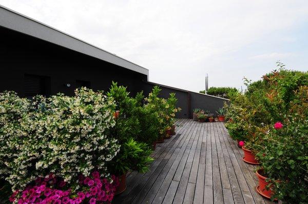 Photo 13 of vc1 modern home
