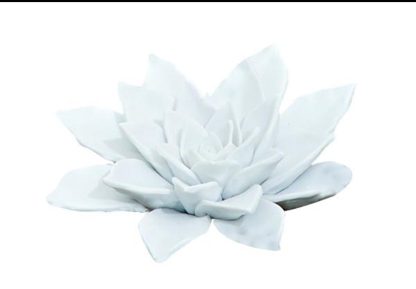 Nadud Bisque White Porcelain Succulent Figurine