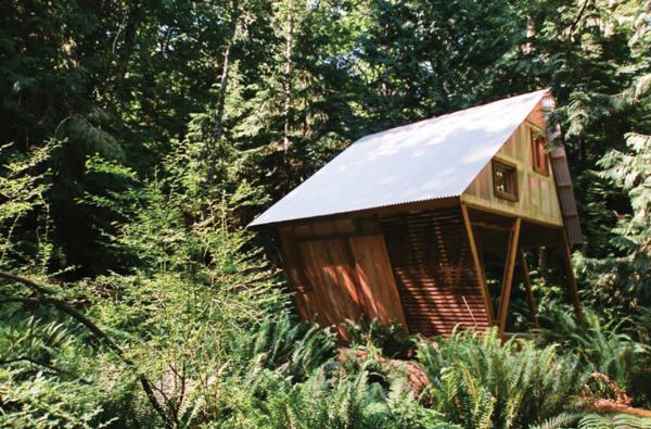 Photo  of Salala modern home