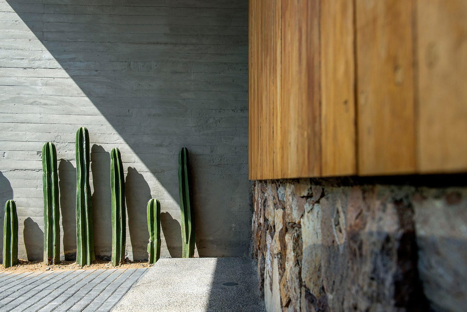 Front Yard Vegetation Tagged: Outdoor, Front Yard, Hardscapes, Gardens, and Flowers.  Casa MA by e|arquitectos