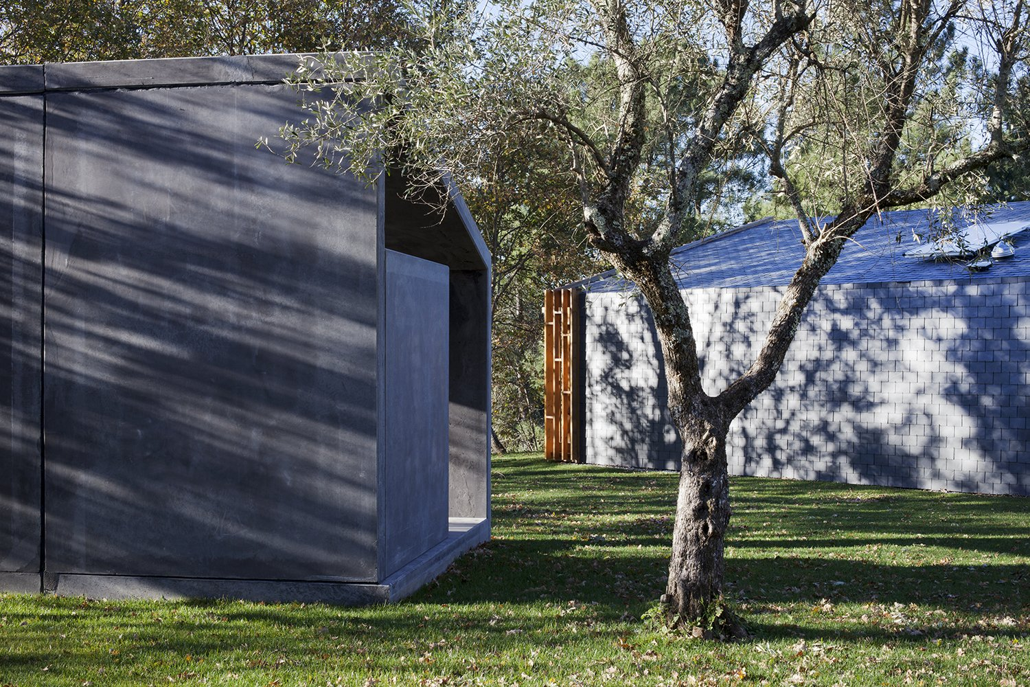 Tagged: Outdoor, Front Yard, Side Yard, Garden, Trees, Grass, and Concrete Patio, Porch, Deck.  GOMOS #1 by Alban Wagener