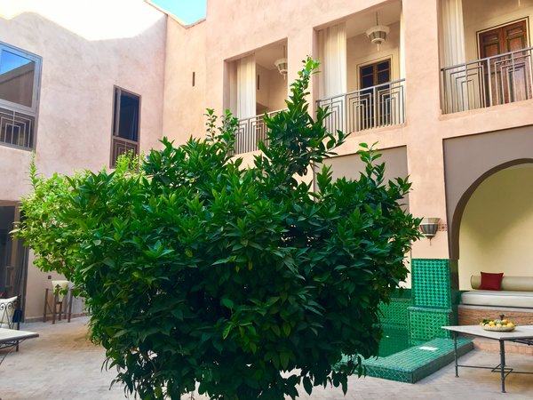Modern home with outdoor, front yard, rooftop, and garden. http://abnb.me/EVmg/ZerWHwW7KD Photo 9 of ROYALRIAD MARRAKECH