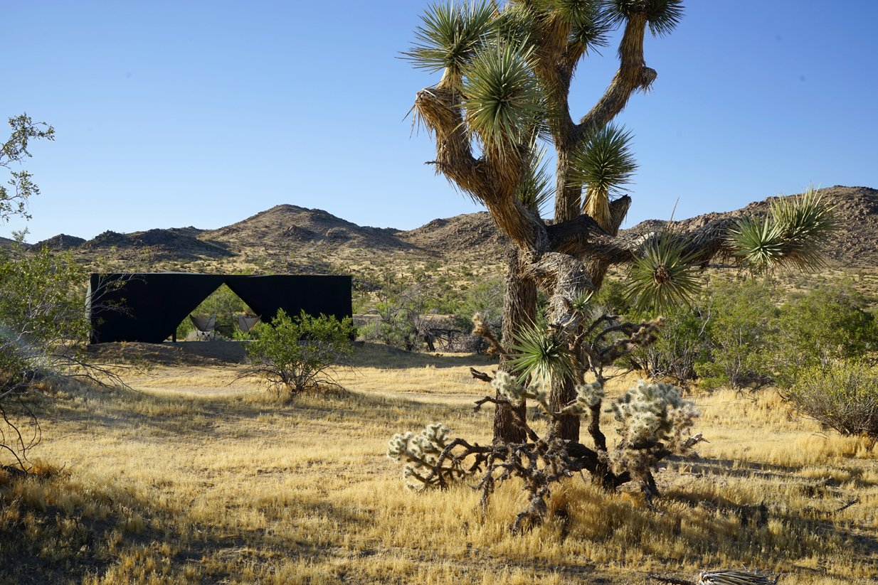 The Joshua Tree Case Study Cabin  Tagged: Outdoor, Desert, Trees, and Grass.  Joshua Tree Case Study Cabin by Mike Vensel