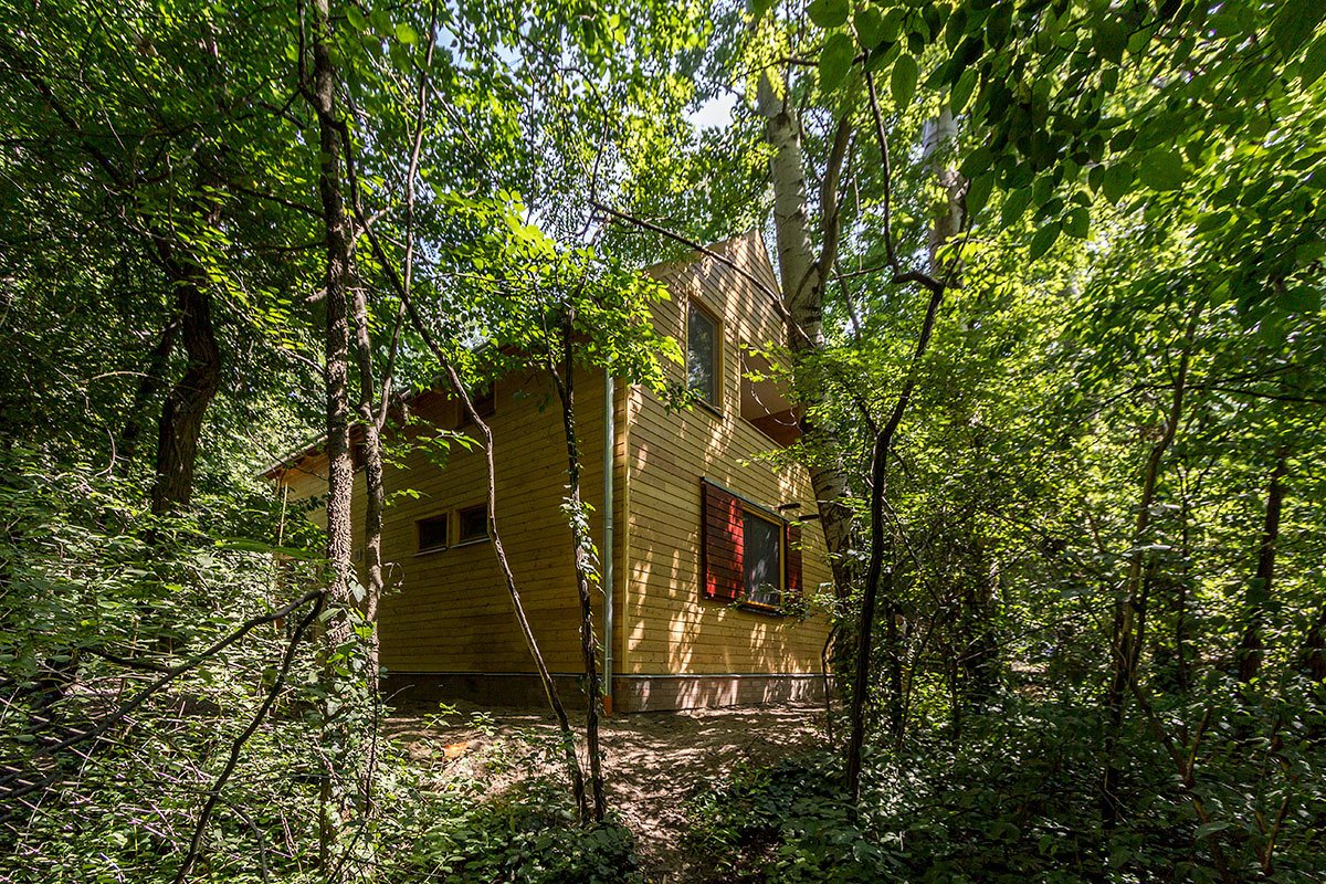 While looking out, you can only see dense forestry around the cabin, neighboring summer getaways are just a stone's throw away from each other in this holiday community Tagged: Trees, Back Yard, Exterior, Shingles Roof Material, House, and Wood Siding Material.  A Family Affair by Studio Bunyik
