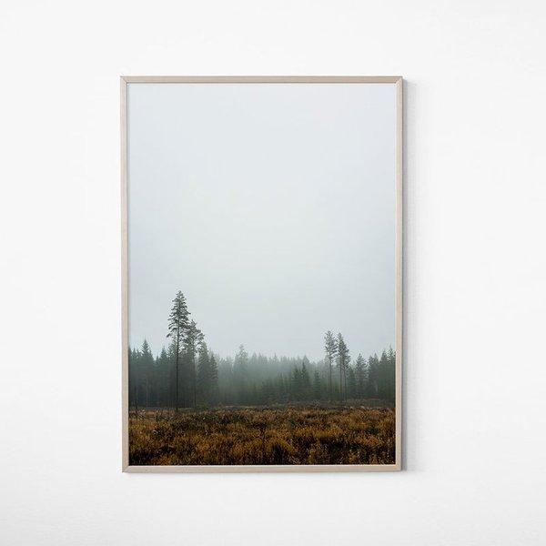 Skog Poster by E. Dunker