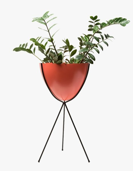 Hip Haven Tall Black Stand - Coral Bowl
