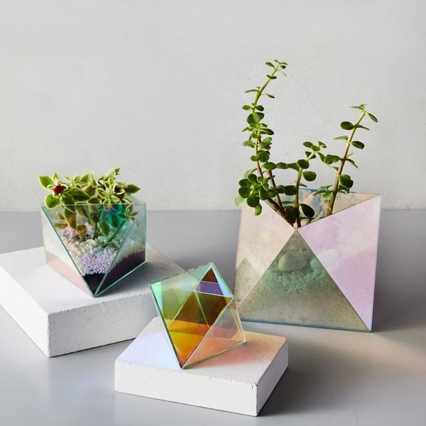 West Elm Faceted Glass Terrariums - Iridescent