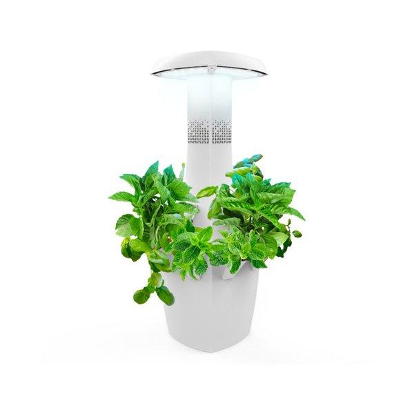 ROOT Indoor Garden System