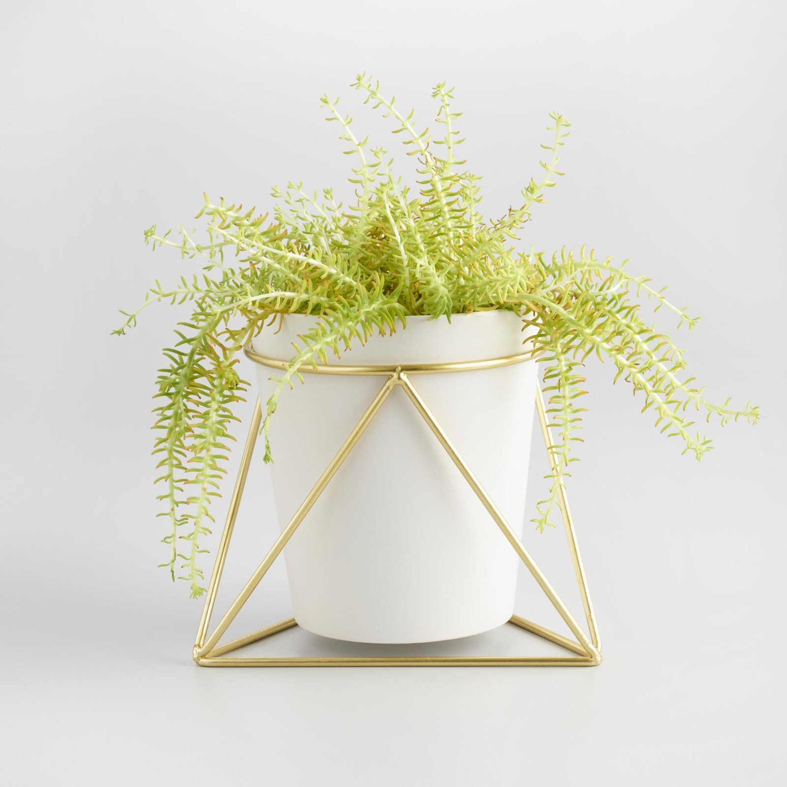 World market gold geometric stand and white vase by cost plus world market gold geometric stand and white vase by cost plus world market dwell reviewsmspy