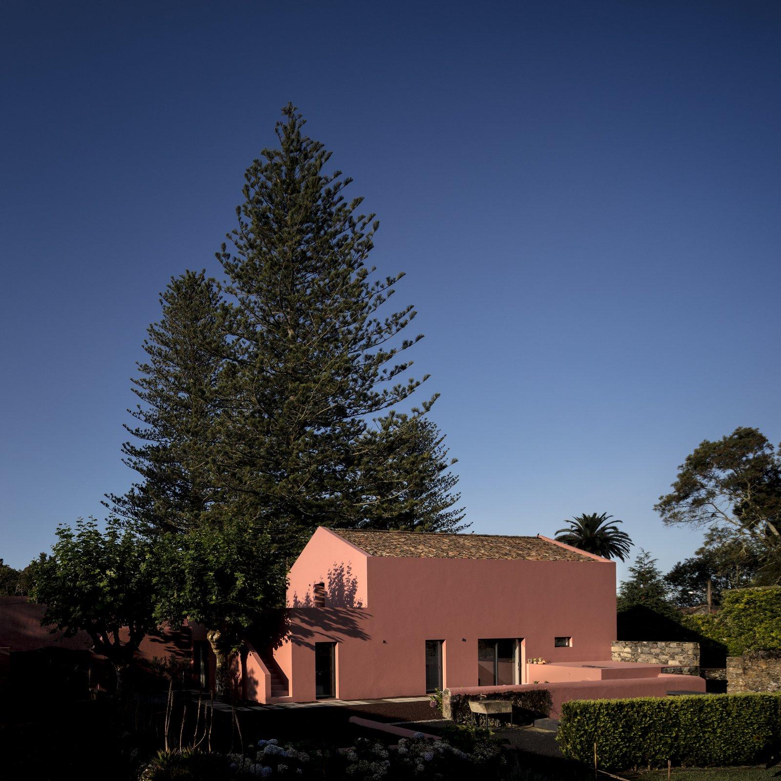 Tagged: Exterior.  Pink House by joana garcia oliveira